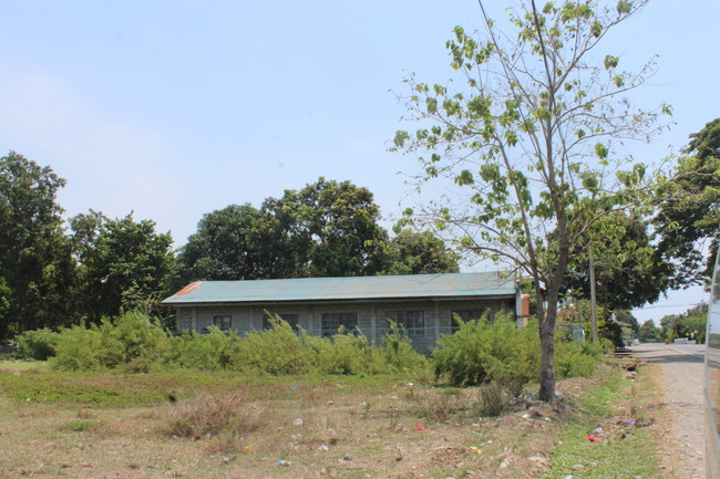 RUSH SALE! Commercial Lot in Bauang, La Union